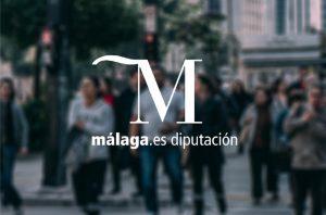 Estudio de mercado de la Diputación de Málaga