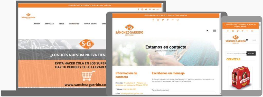 web sanchez garrido ejemplo